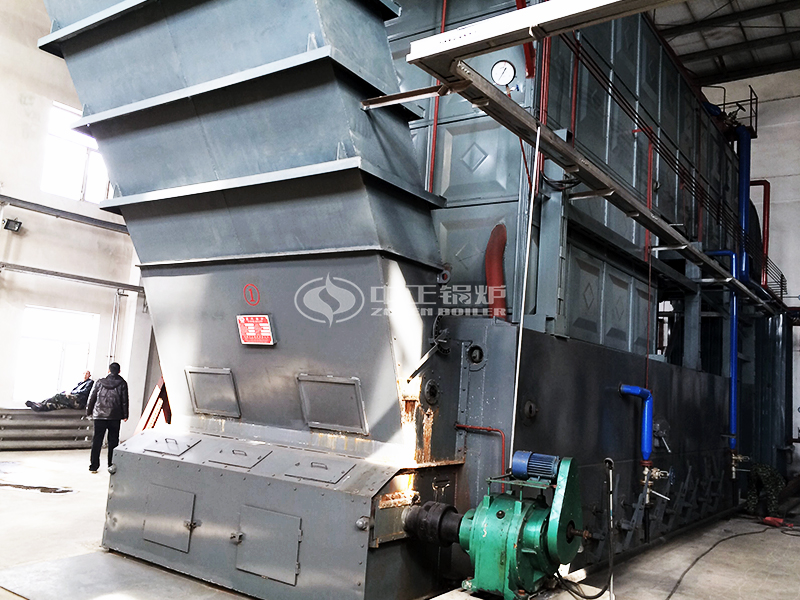 20 ton Coal Fired Boiler For Dairy factory