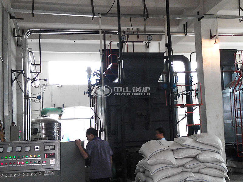 4 tons DZL Coal-fired Steam Boiler For Rubber Tire Factory