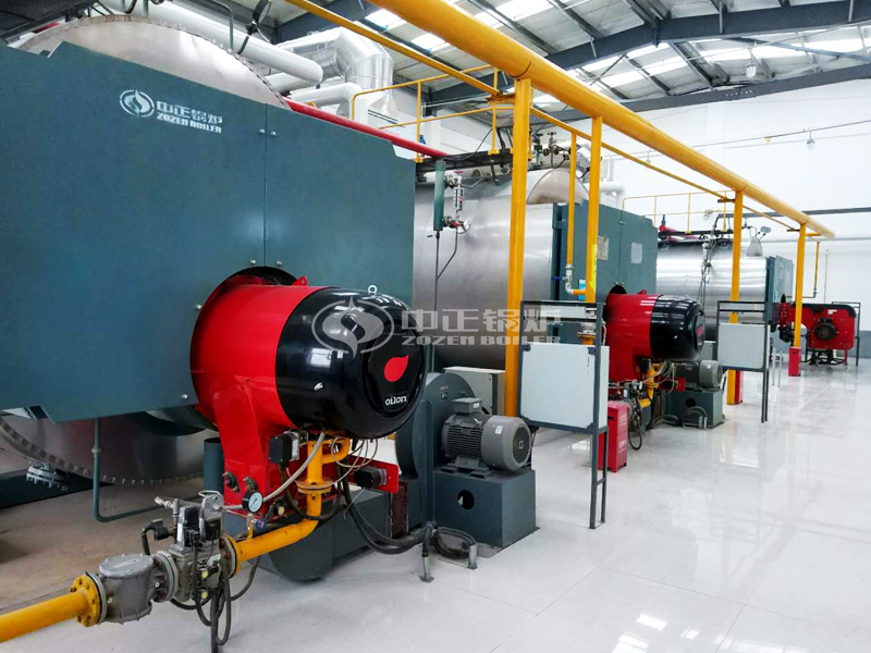10 ton WNS Condensing Gas-fired Boiler For Beverage Industry